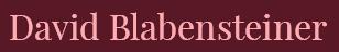 blabensteiner_schriftzug_308x48